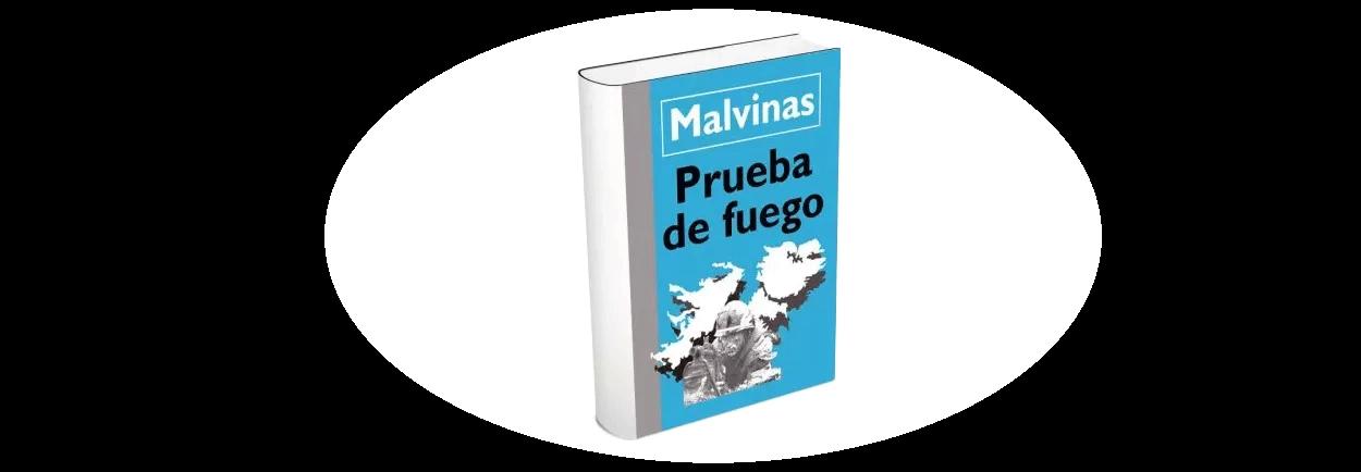 Malvinas, prueba de fuego